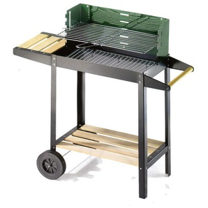 Barbecue Carbone 50-25 Green/W 50311